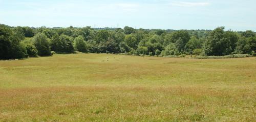 Blick von der oberesn Terrasse ins Tal. Farblich erkennbar die Geländekannte die Teil eines Näherungshindernisses gewesen sein könnte.